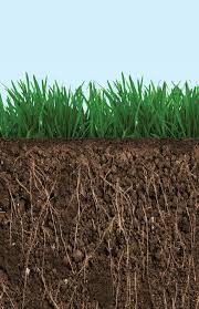 Under-Over Turf is a dark rich soil